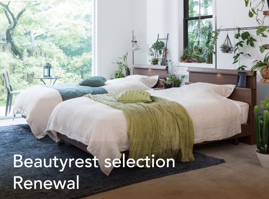 Beautyrest Selection Renewal